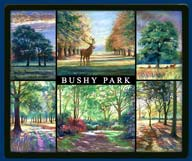 Mouse mat of Bushy Park, Middlesex