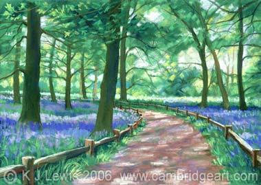 Bluebells At Kew